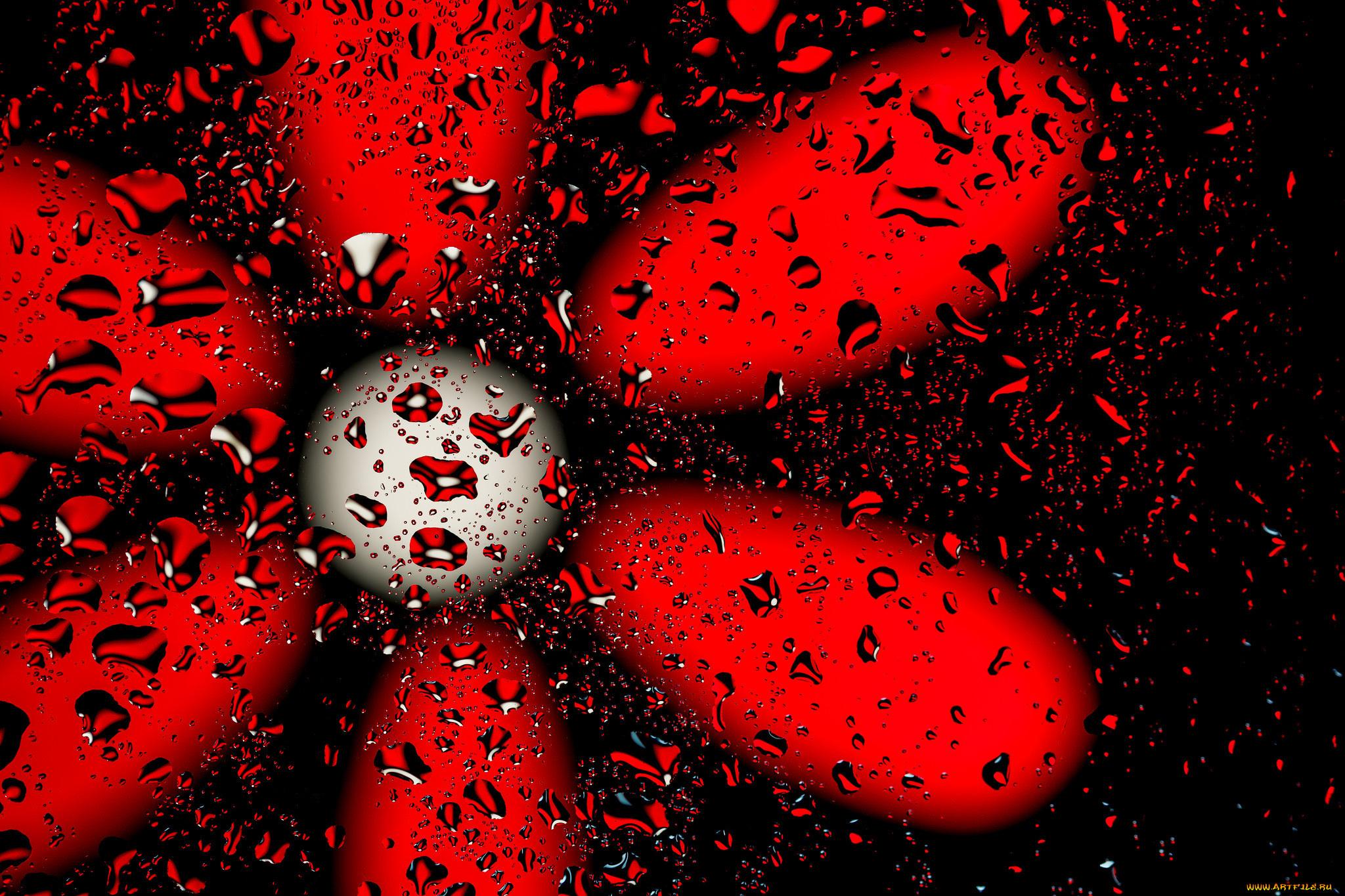загружайте прикольные картинки красного цвета год жизни малыша
